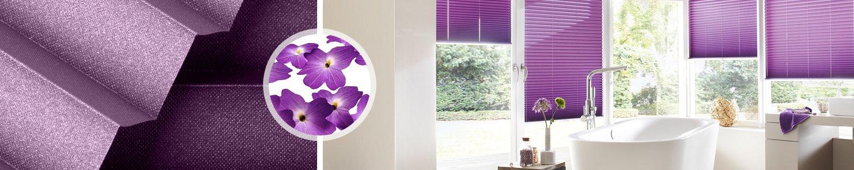 Plissee lila unser sortiment an violetten plissees - Solid fenster erfahrungen ...